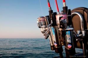 Un bon support préserve la vie des cannes en navigation